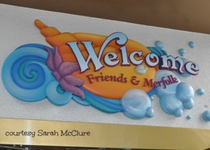 ariel-s-grotto-welcome