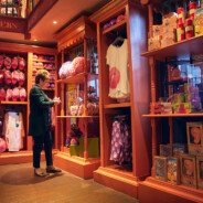 Discover the Behind-the-Scenes Story of the Toys at Weasleys' Wizard Wheezes