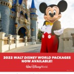 Breaking News: 2022 Walt Disney World® Resort vacation packages are now available to book!