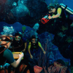 Disney's Scuba Experience at Epcot – Dive Quest
