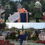 The Festivals of Epcot