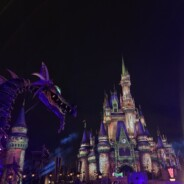 Disney Villains After Hours at Magic Kingdom