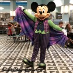 Disney Preserves the Magic with New Character Experiences!