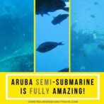 Aruba's Semi-Submarine is Fully Amazing!
