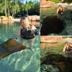 My Day at Discovery Cove