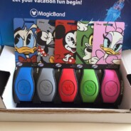 MagicBands!